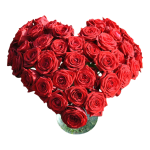 hartboeket rode rozen