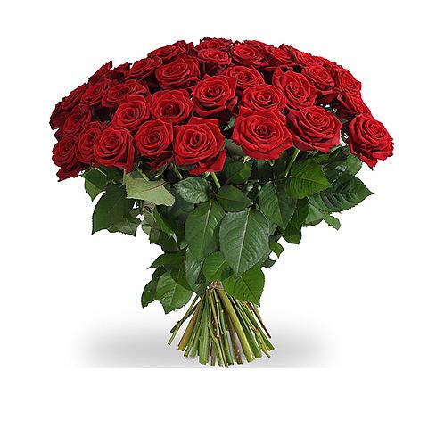 rode rozen beoket