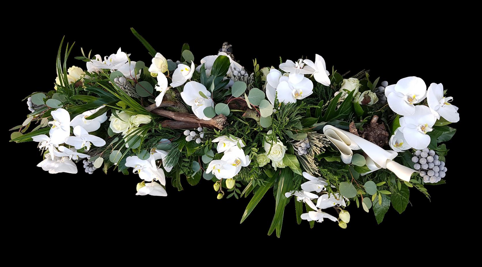 kistbedekking met druiventak paleanopsis