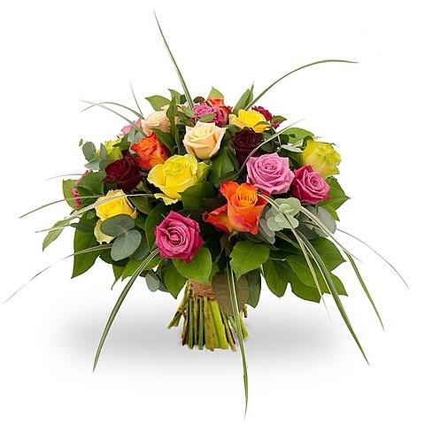 gekleurde rozen met groen